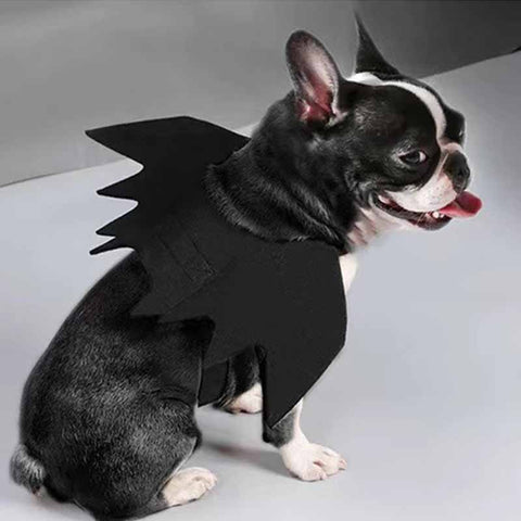 French Bulldog Bat Halloween Costume - Frenchiely