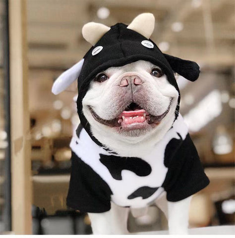 French Bulldog Halloween Cow Costumes with Bag Attached