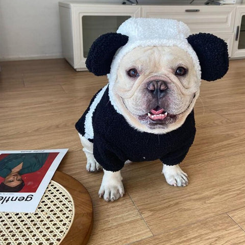 Frenchiely French Bulldog Panda Costume by Frenchiely