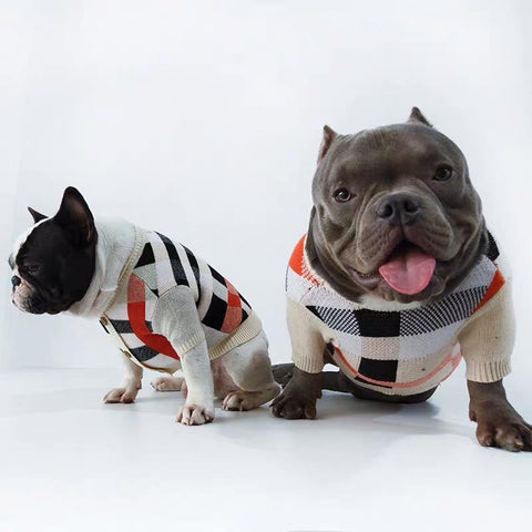 Dog Beige Striped Cardigan Sweater - Frenchiely