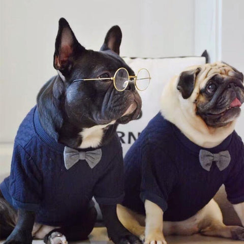 french bulldog jumpers for dogs with Bow - Frenchiely