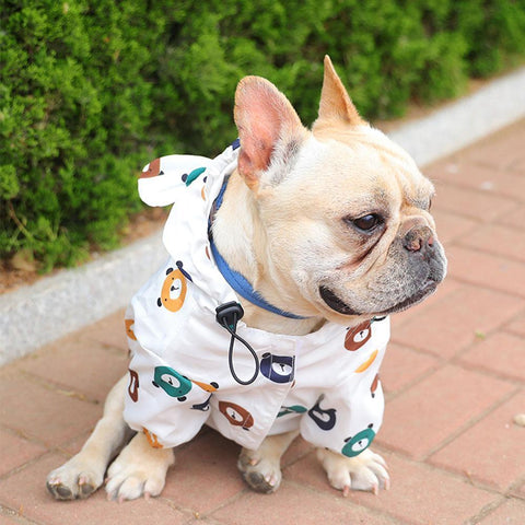 Cartoon Bear Dog Button-up Raincoats - Frenchiely