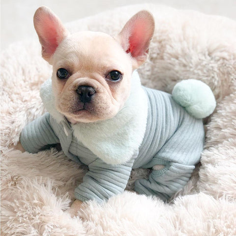 Dog Pajamas Fleece for Bulldogs - Frenchiely