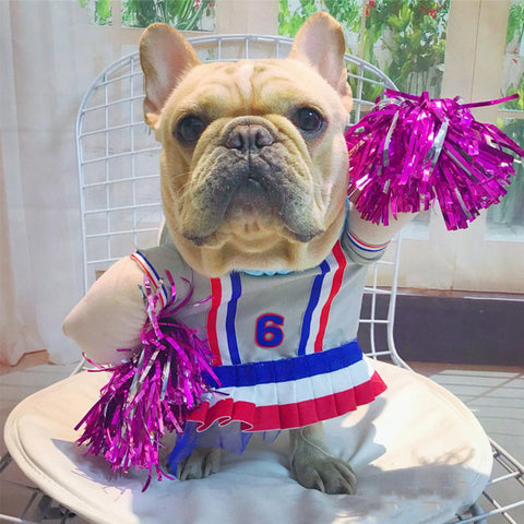 dog cheer leader costume for medium dogs - Frenchiely
