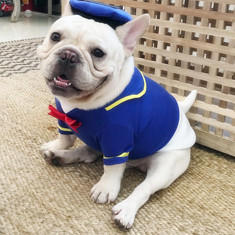 Dog Donald Duck Halloween Costume for Medium Dogs - Frenchiely