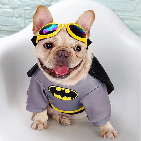 Dog Batman Costumes for Medium Dogs - Frenchiely