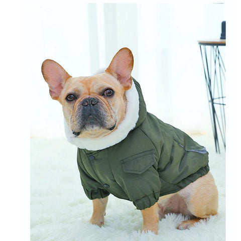 Dog Blue Jean jacket Fur Hoodie - Frenchiely