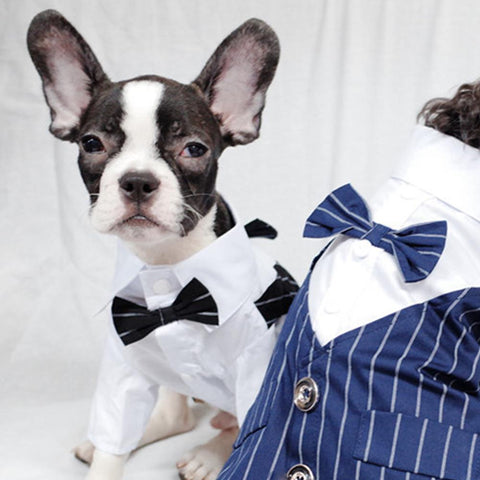 Dog Faux Two-Piece Wedding Suit with Necktie for French Bulldog - Frenchiely