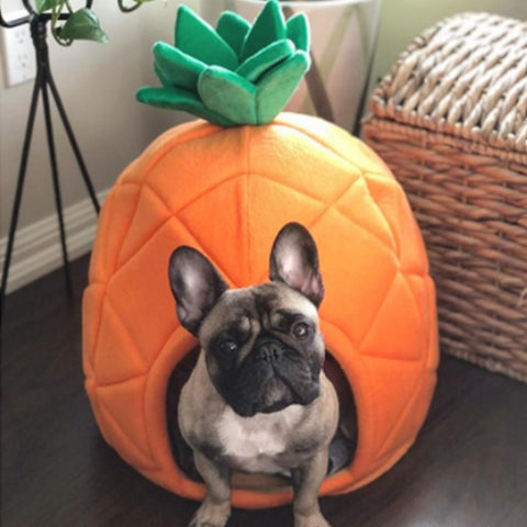 Dog Foldable Pineapple French Bulldog Puppy Nest Bed - Frenchiely