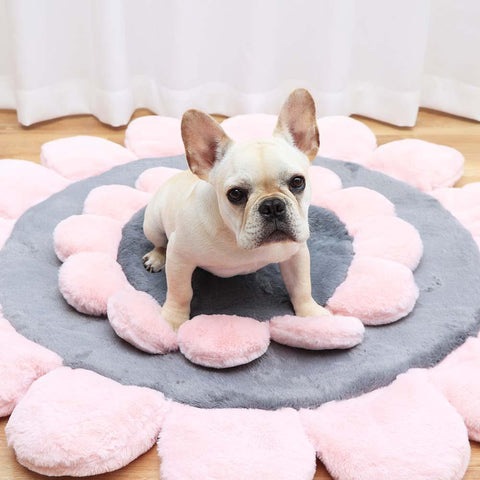 Dog Flower Shaped Mat Sofa with Soft Cushion - Frenchiely