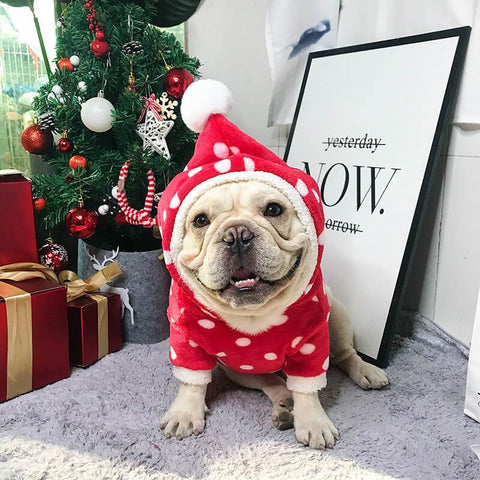 Cute Christmas Dog Red Hoodie Clothes - Frenchiely