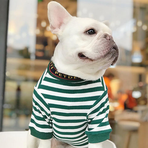Dog Sweaters for French Bulldogs - Frenchiely