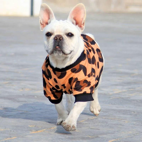 Leopard Sweater Coat for Frenchies - Frenchiely