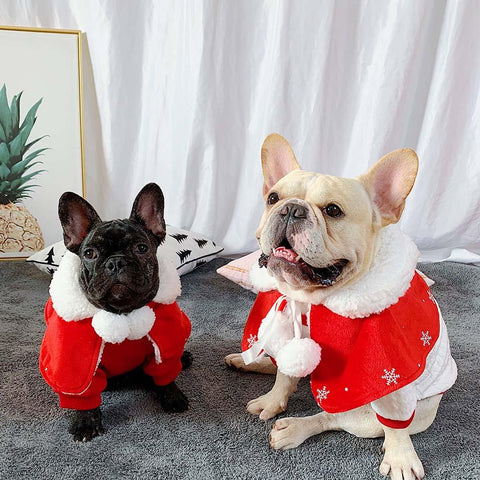 santa costume for dog Christmas cloak for small dogs - Frenchiely