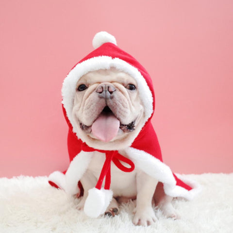 christmas dog funny hooded cloak - Frenchiely