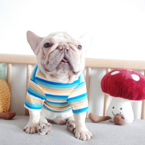 french bulldog Rainbow outerwear Shirts - Frenchiely