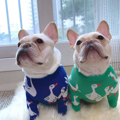 Cartoon Goose Soft Dog Sweaters - Frenchiely