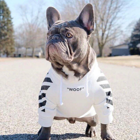 Small Dog Hoodies 'Woof' - Frenchiely