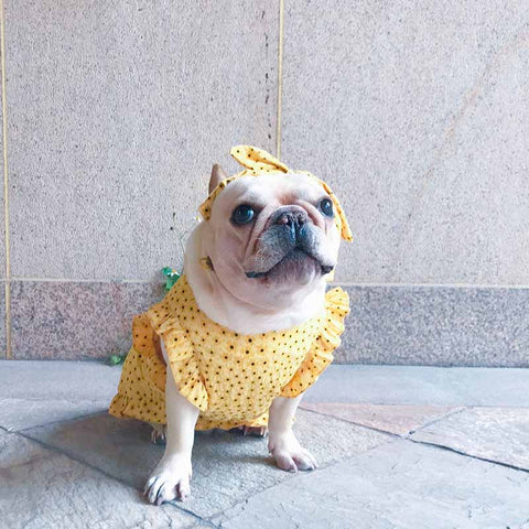 Dog Floral Puff Sleeve Dress - Frenchiely