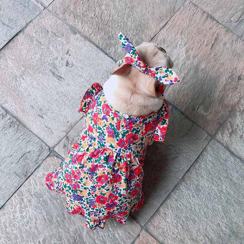 dog retro vintage floral dress - Frenchiely