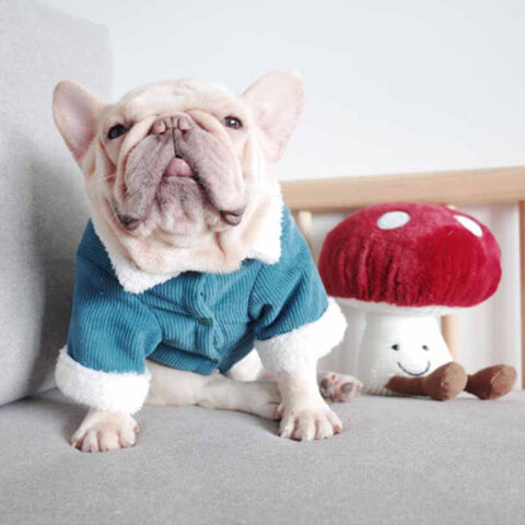Dog Winter Jacket Coat with Fur Collar - Frenchiely