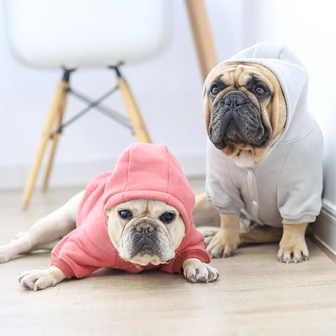 Super Warm Dog Winter Jacket Coat - Frenchiely