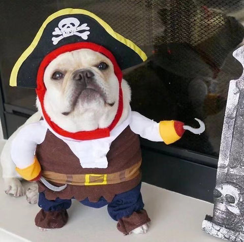 Dog Halloween Pirate Hat Costumes - Frenchiely