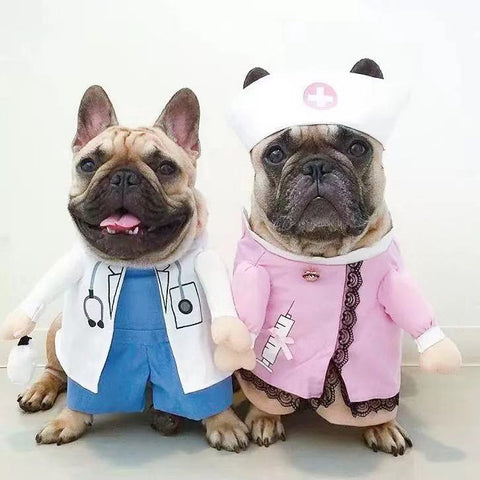 dog doctor nurse halloween costumes - Frenchiely