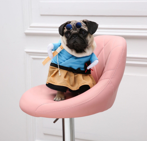Dog Funny Halloween costumes - Frenchiely