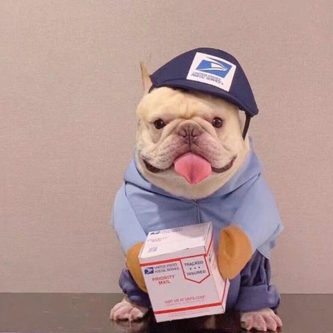 Dog USPS UPS Costume for Small Medium Dogs- Frenchiely