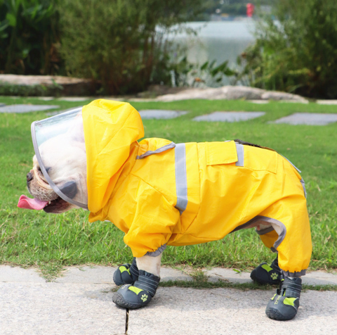 Dog Raincoat Rain Jacket for Pugs Medium Dogs - Frenchiely