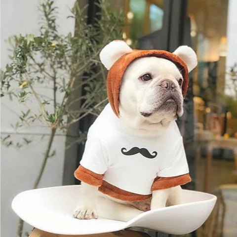 Cartoon Bear Dog Hoodie Costume for Bulldogs-2 Pieces - Frenchiely