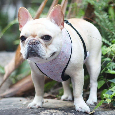 pink camo mermaid dog harness vest - Frenchiely