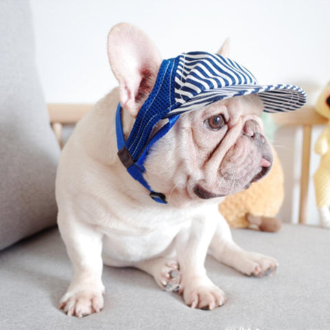 Dog Sunscreen Hat for Medium Dogs - Frenchiely