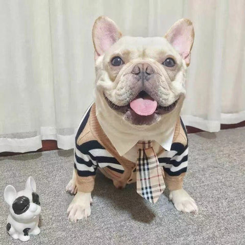 French Bulldog Striped Cardigan Sweater with Necktie