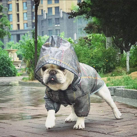 Camo Dog Raincoat Plaid Stripe Rain Jackets for Bulldogs - Frenchiely