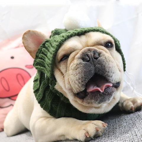 Dog Knitted Snood Hat for French Bulldogs - Frenchiely