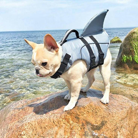 french bulldog life vest jacket with shark fin - Frenchiely