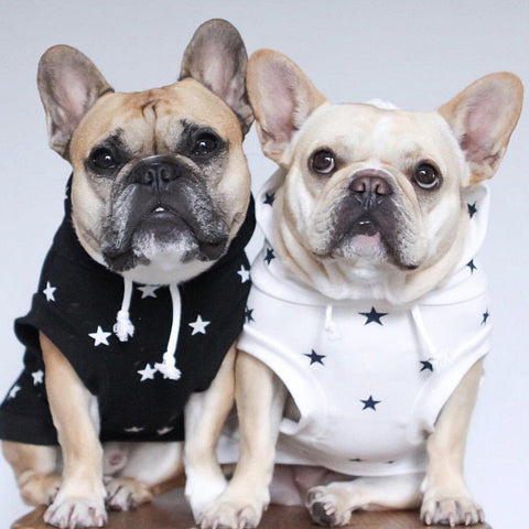 Cheap Dog Sweatshirt Hoodie Vest with Stars - Frenchiely
