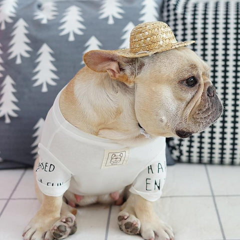 French Bulldog Summer Straw Hat Cap with Adjustable String - Frenchiely