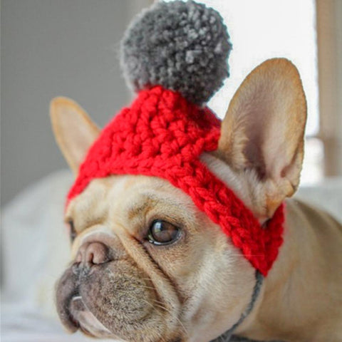 Dog Pom Pom Winter Knitted Hat for French Bulldogs - Frenchiely