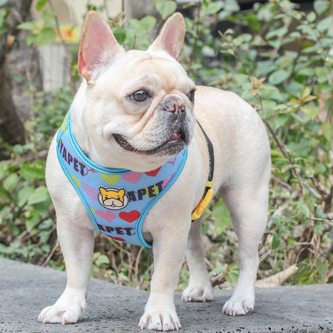 Dog Mesh Vest Harness with Cartoon French Bulldog Print - Frenchiely