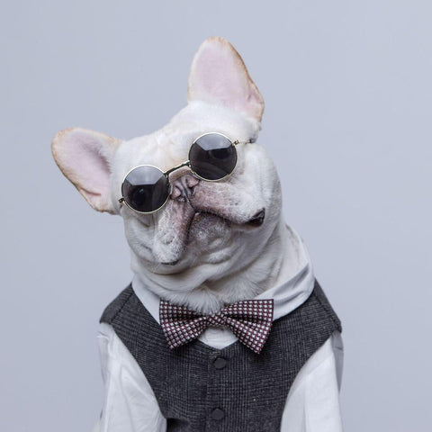 Dog Grey Suit Waistcoat Vest for Medium Dogs - Frenchiely