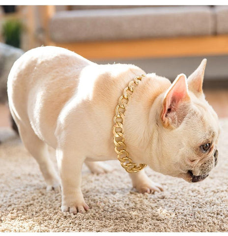 French Bulldog Golden Chain Decorative Collar - Frenchiely