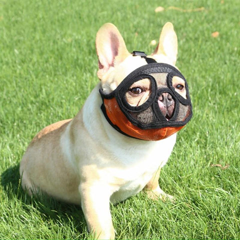 French Bulldog Mesh Muzzle Mask for Short Snout Dogs - Frenchiely