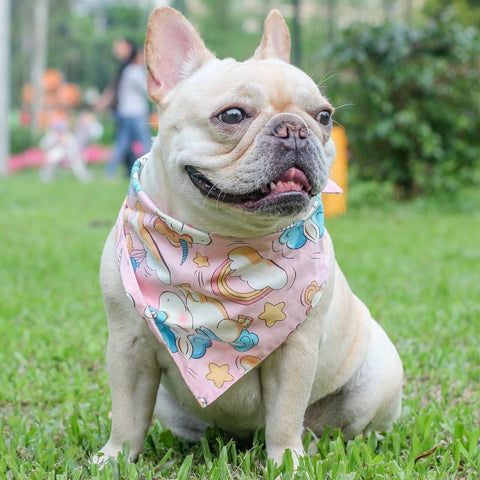 Dog Bandana Girl with Pink Unicorn Print - Frenchiely