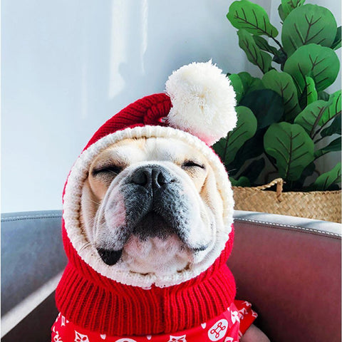 Dog Ear Warmer Christmas Knitted Hats for French Bulldog - Frenchiely