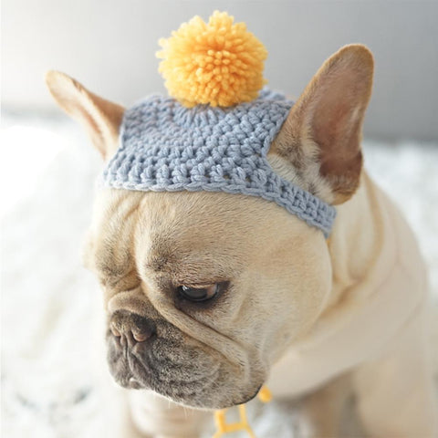Warm Dog knit Pom Pom Hat for Medium Dogs - Frenchiely