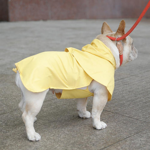 Small Puppy Rain Jacket for French Bulldogs - Frenchiely