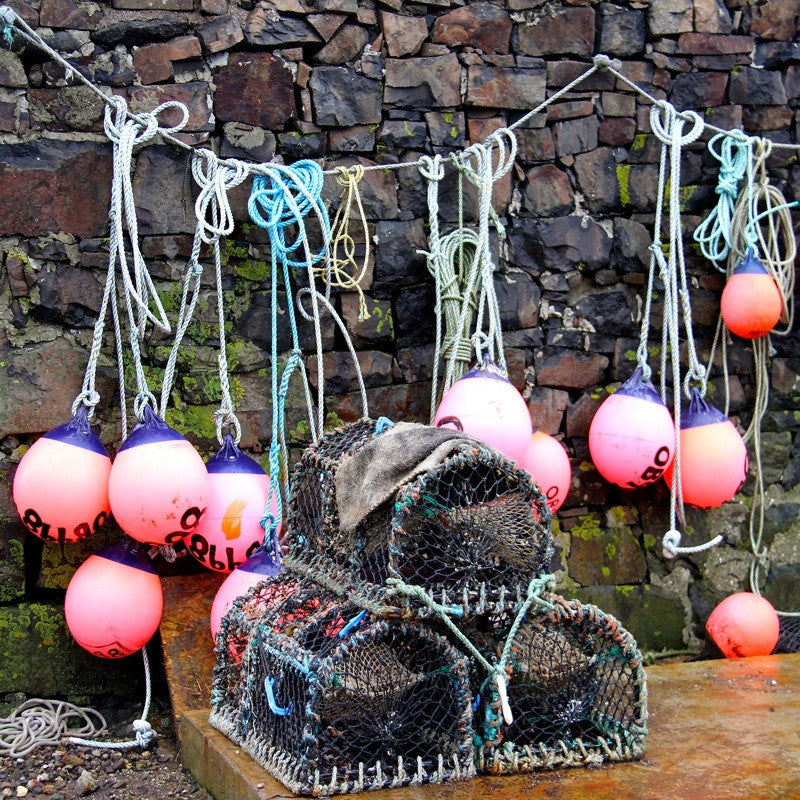 <p>On a remote beach in the Western Isles of Scotland, I found this lone fisherman's hut, draped withÊlobster pots and bright pink marker bouys.</p>